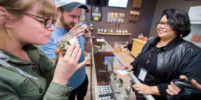 What I Learned From Visiting 50 California Dispensaries