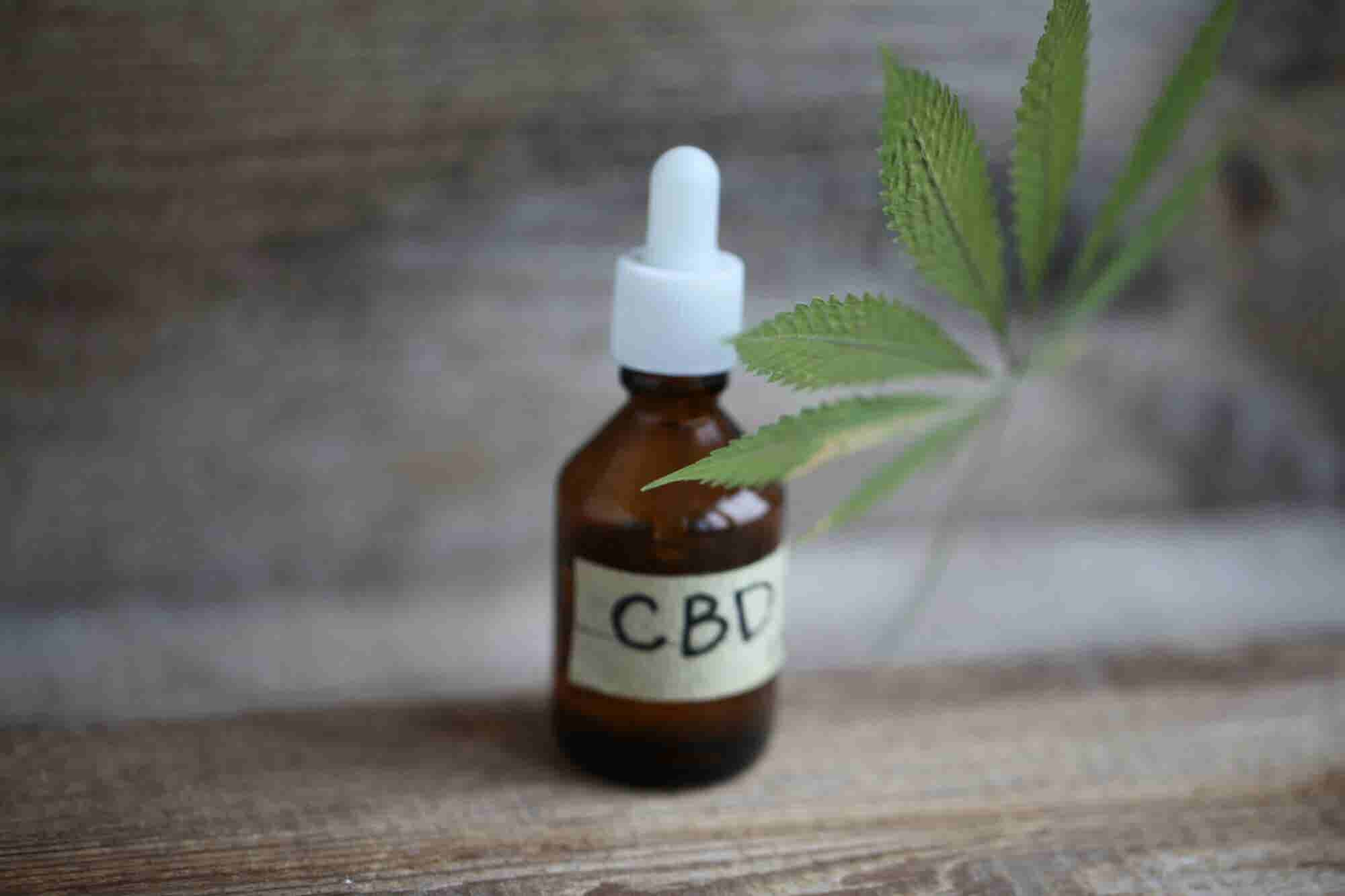 9 Money-Saving Tips for Starting Your Own CBD Company