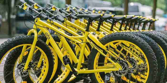 Bike-sharing Unicorn Ofo's Fall from Grace