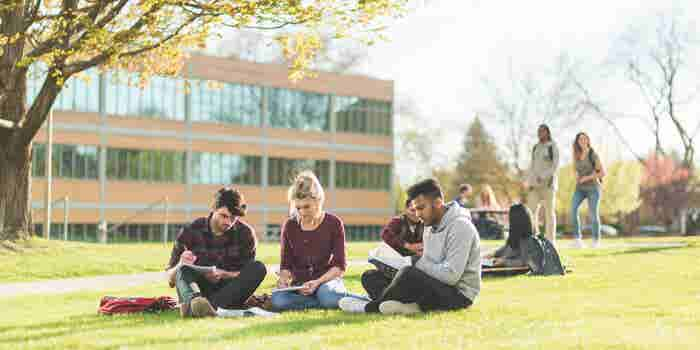 When It Comes to Creating a Great Company Culture, Think Back to ... College