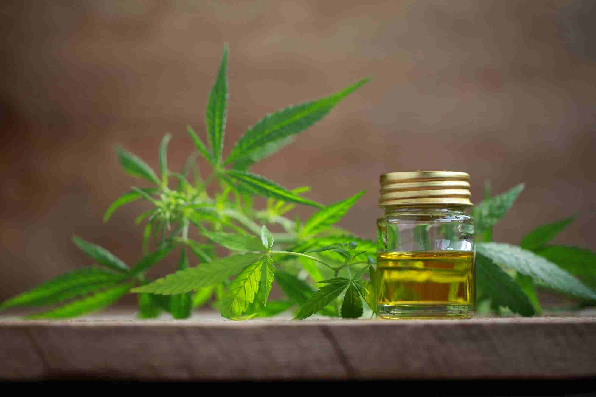 This Is How to Finance Cannabis Oil Extraction Equipment and Keep All Your Equity