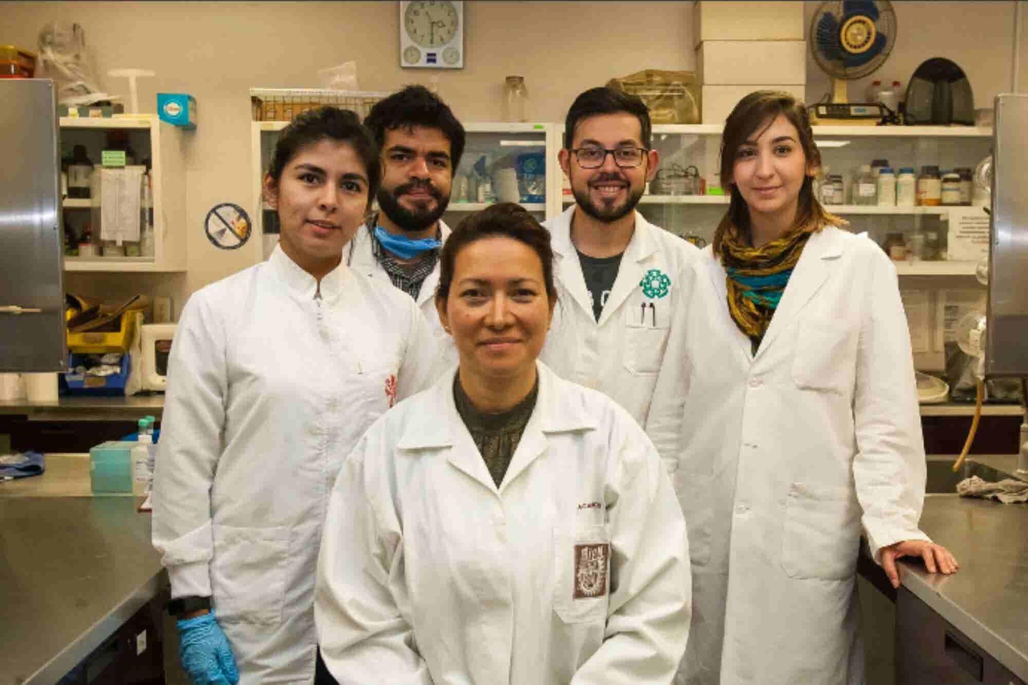 ¡Huleum! Científicos del IPN eliminan en un 100% el virus del papiloma humano