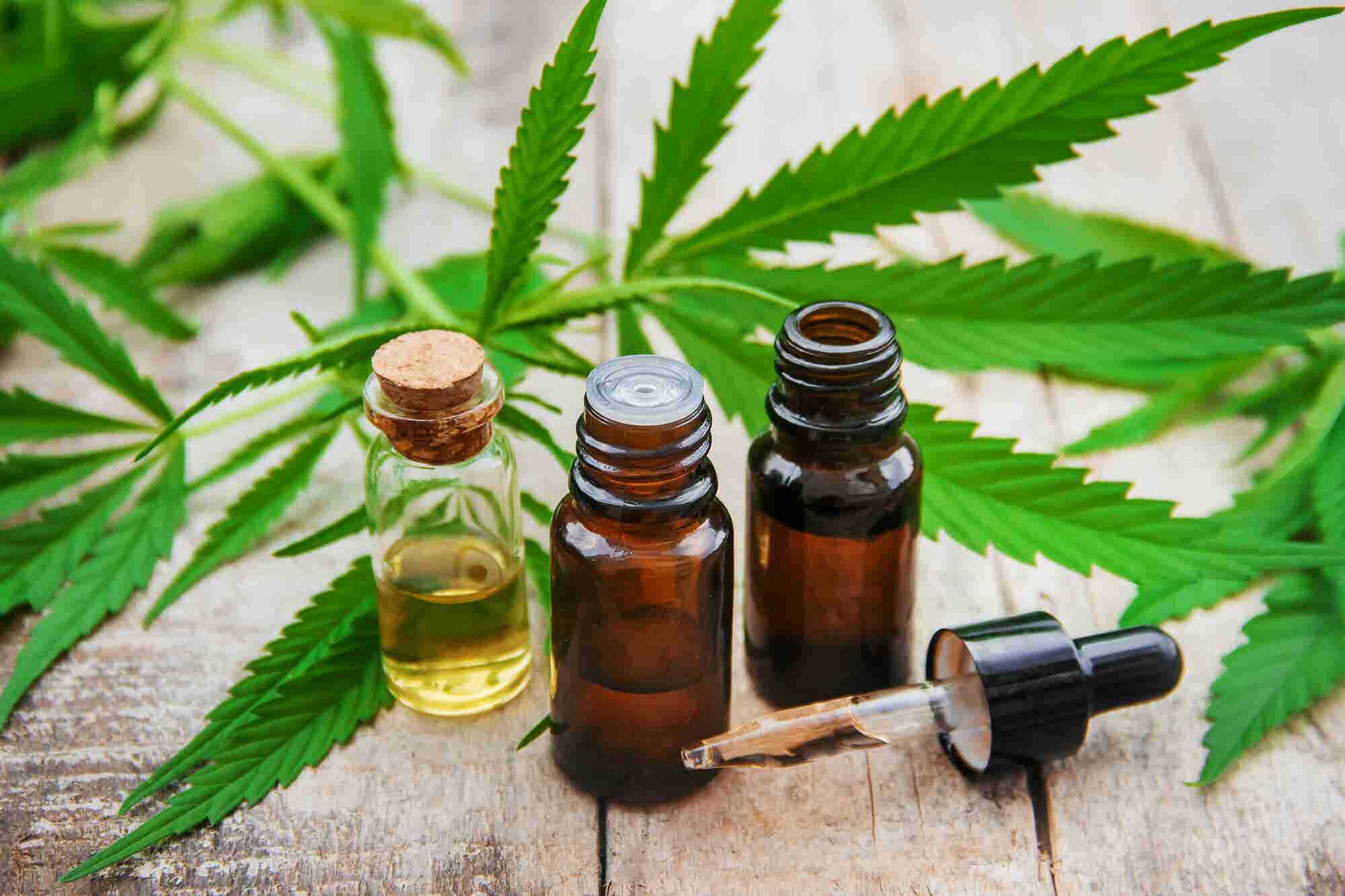 6 Competitive Forces Driving Expansion of Cannabis Extraction