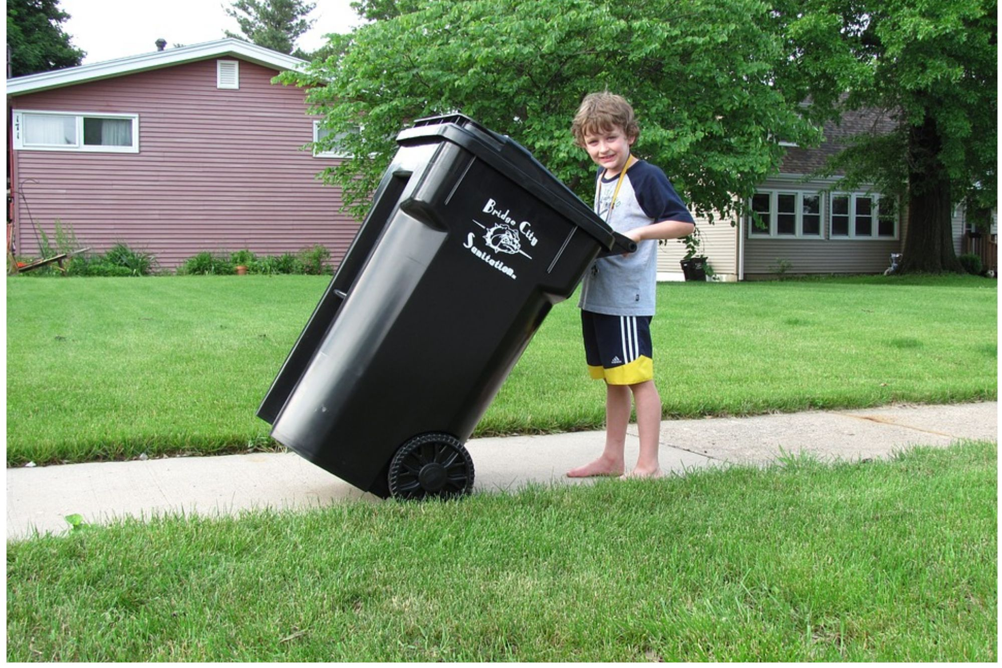 Reason of Waste Management
