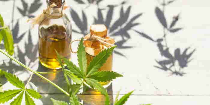 Why Cannabis Oil Is Big Business (and How to Capitalize on It)