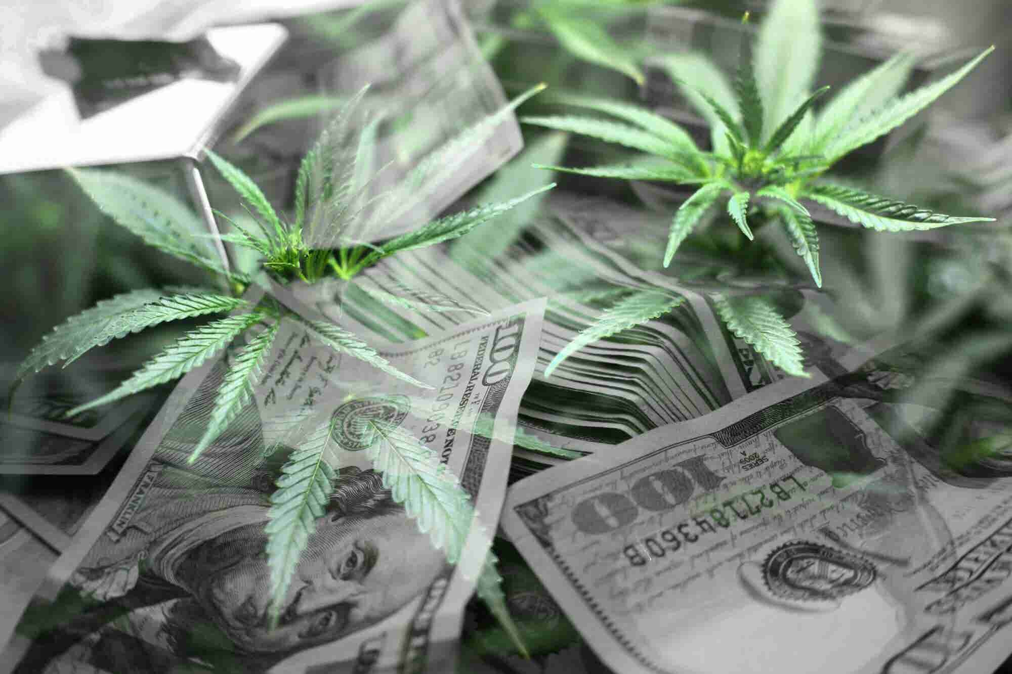 With Democrats in Control, House Looks at Ending Cannabis Banking Restrictions