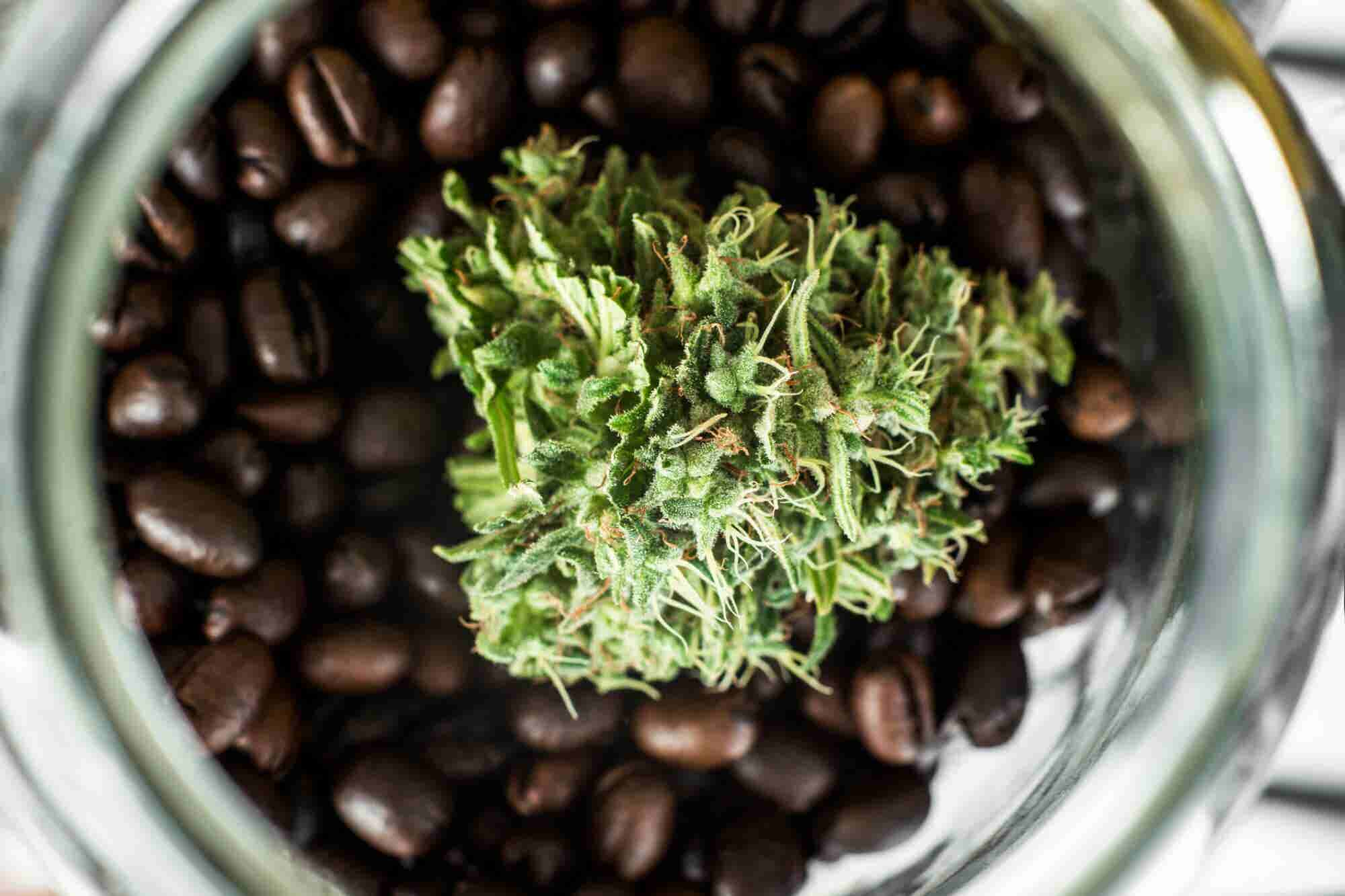 These 6 Coffee Marketing Tricks Are a Perfect Blend for Your Cannabis Brand