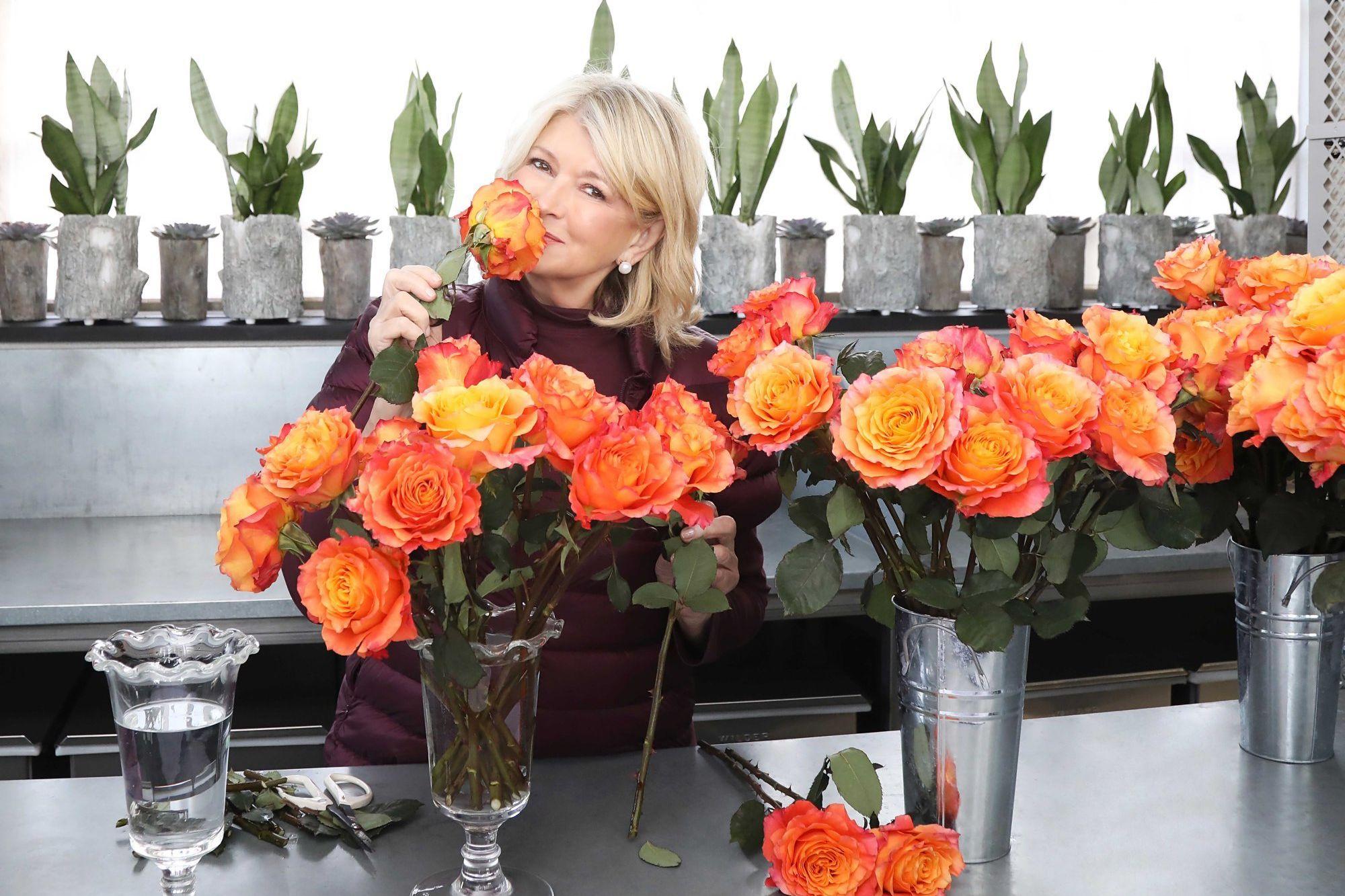 Martha Stewart Living the CBD Life