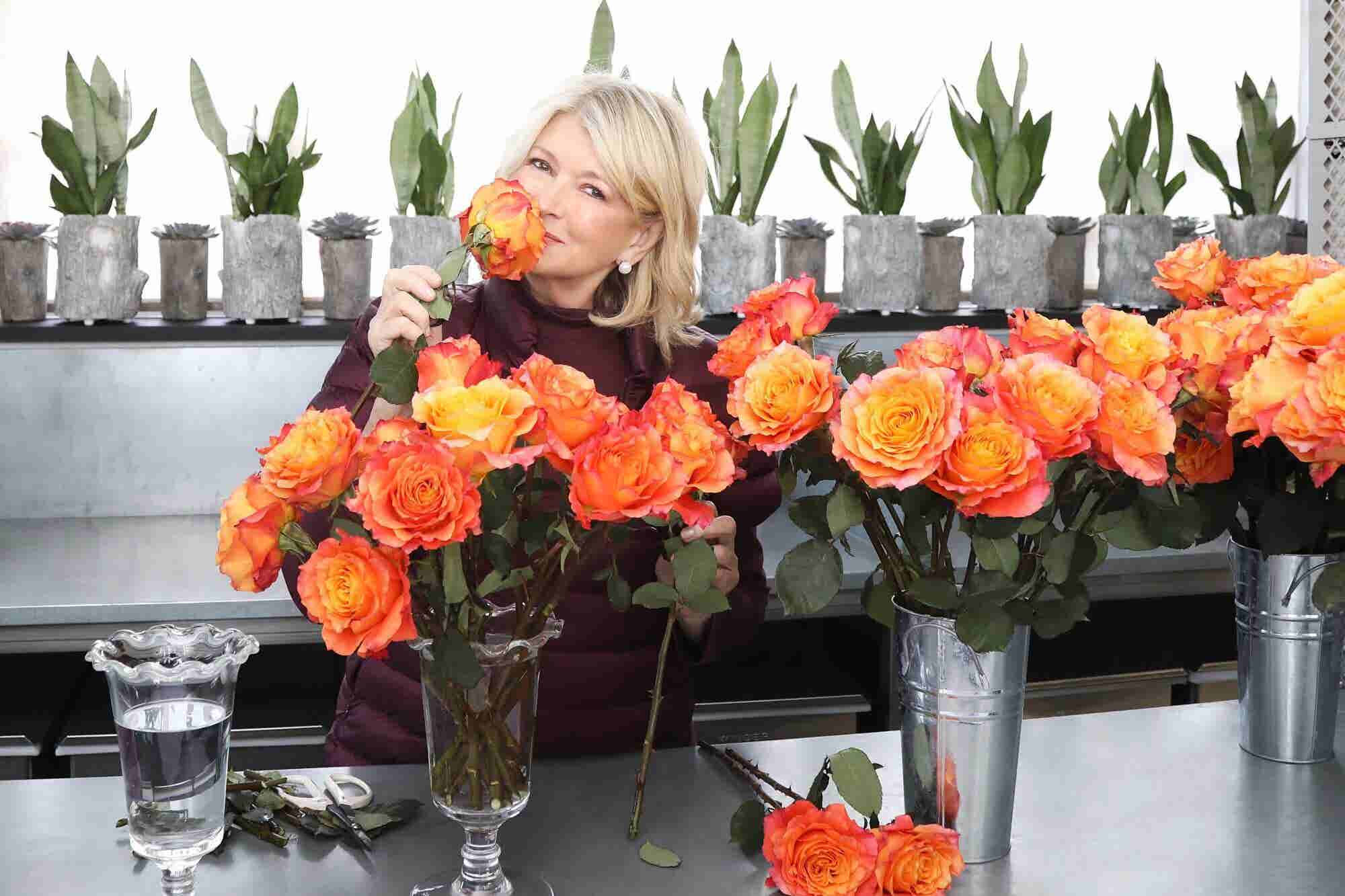 Martha Stewart Living the CBD Life