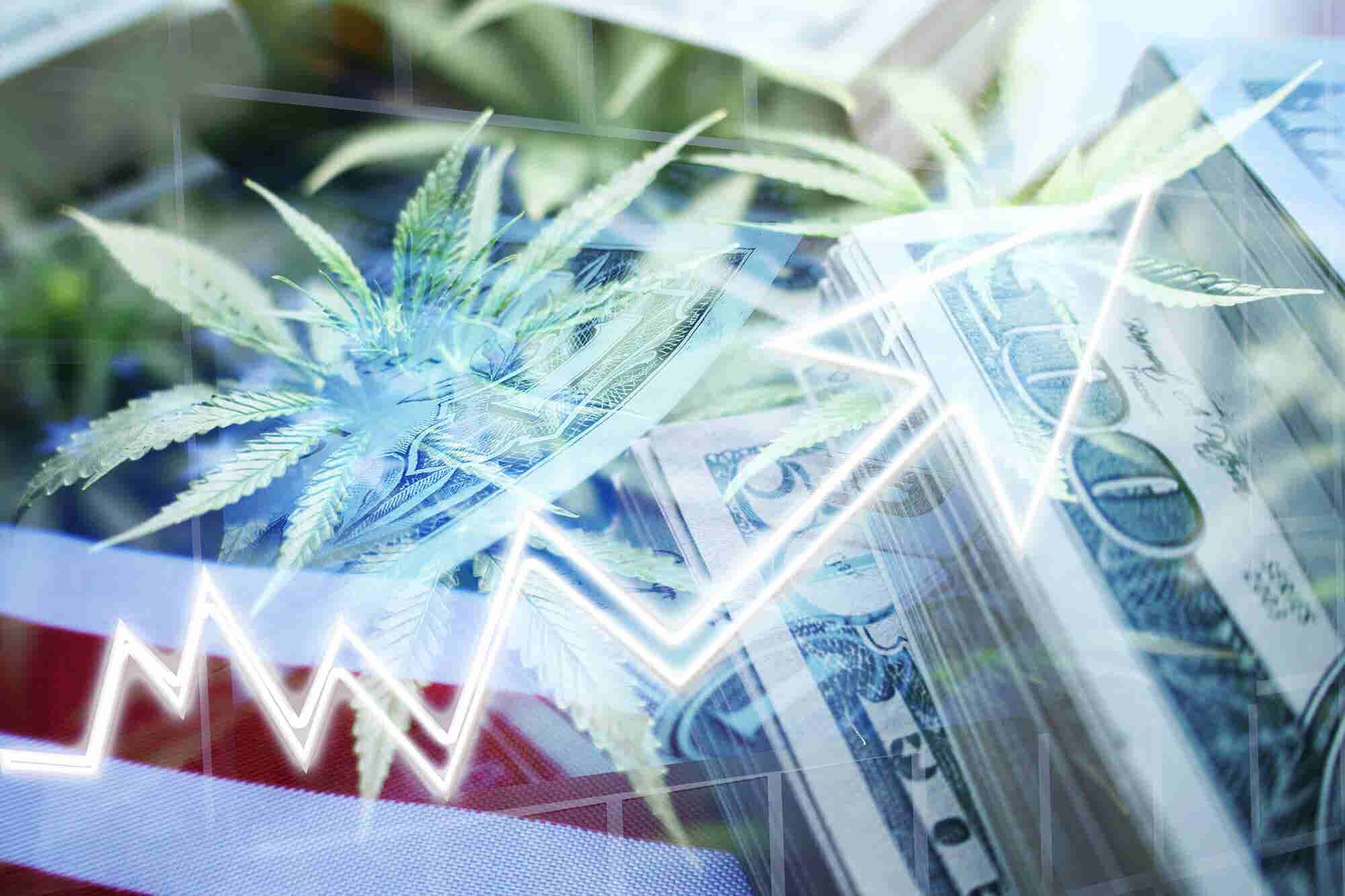 The Mooch Makes the Case for Cannabis Investment