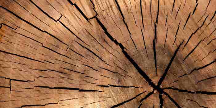 Overcoming The Growth Challenges of Wood Entrepreneurs in India