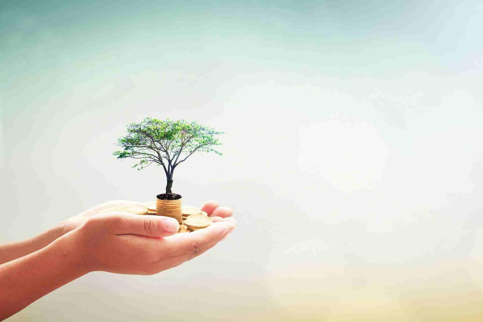 5 Skills for Success for 21st Century Entrepreneurs
