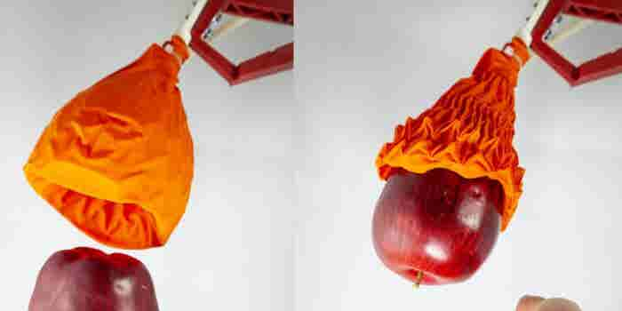 Origami-Inspired Robot Gripper Could Pack Your Groceries
