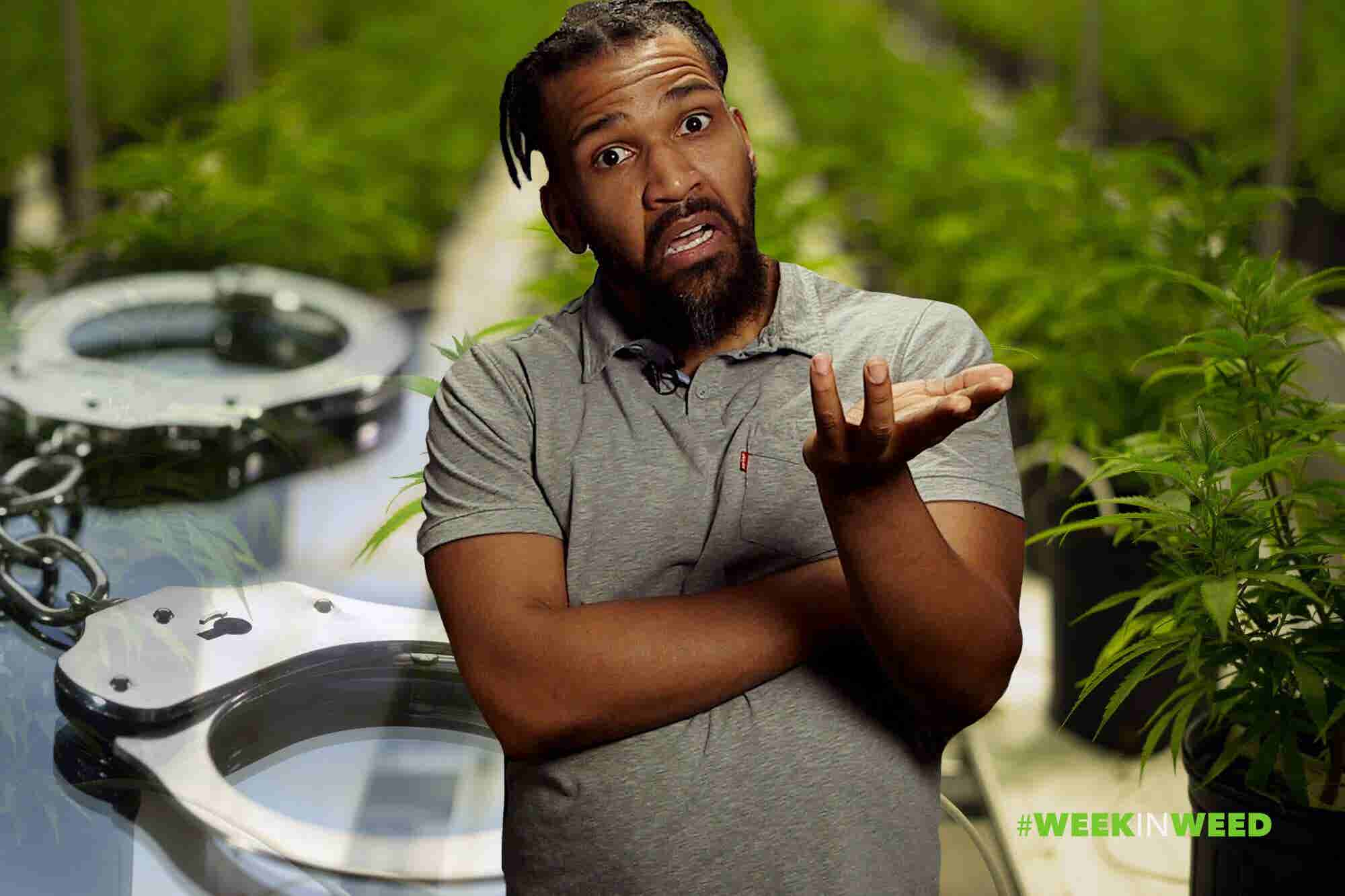 This Week in Weed: You Won't Believe Our Last Story!
