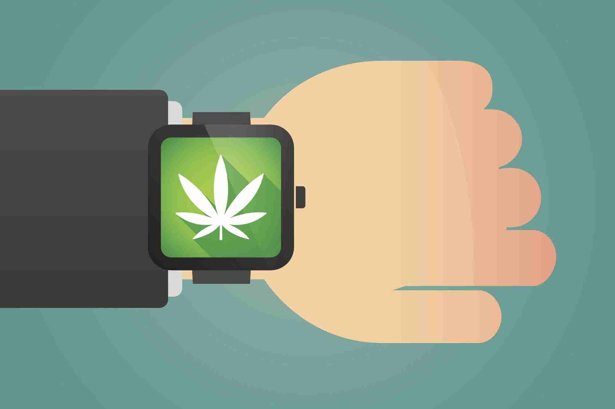 Best Cannabis Software for Seed-to-Sale Tracking