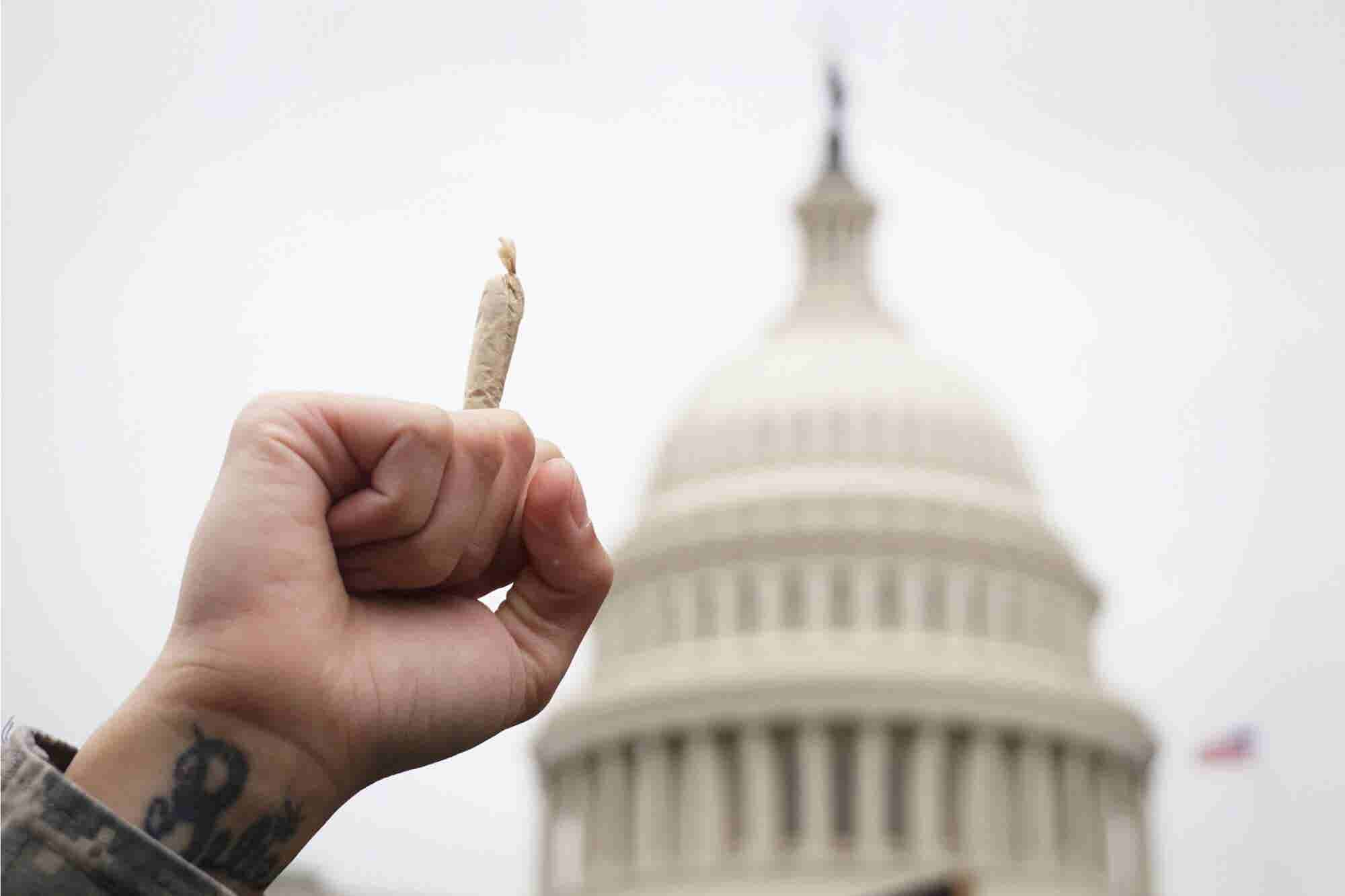 New Poll Finds Highest Support Ever for Weed Legalization