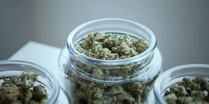 La Cofepris cancela los permisos para productos de marihuana con THC