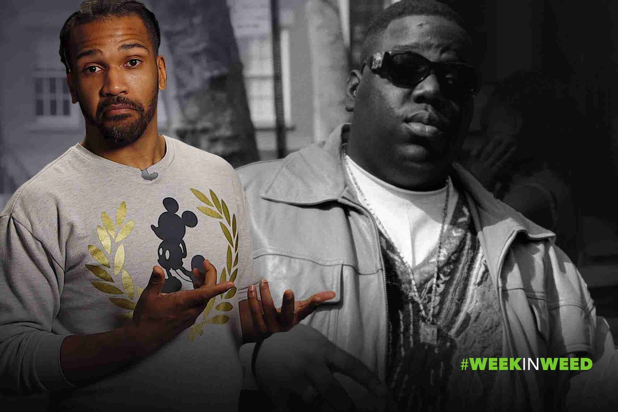 This Week in Weed: Notorious B.U.D!