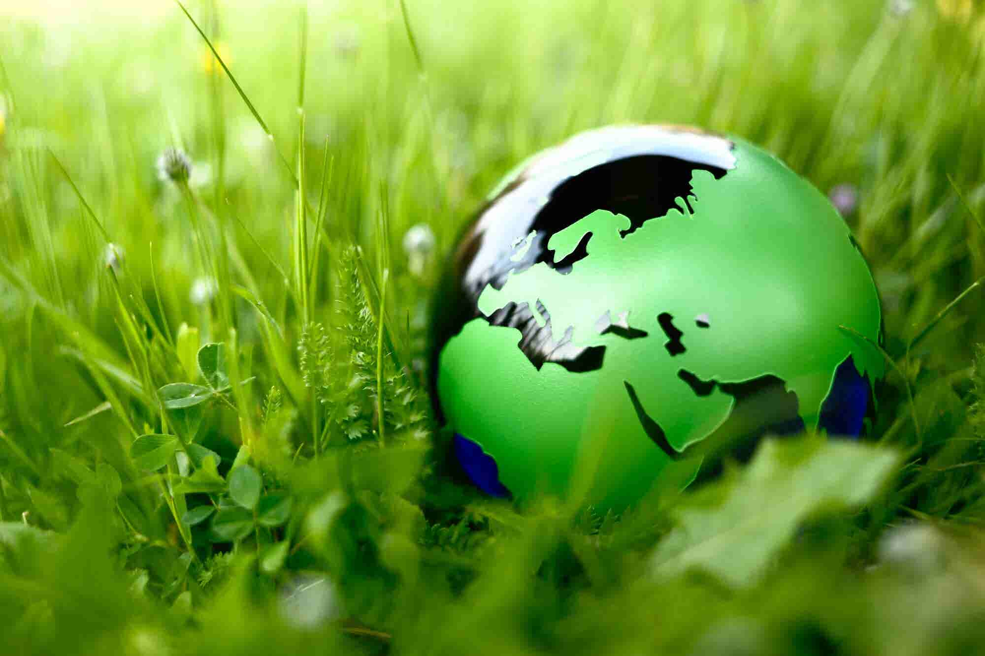 The Far-Reaching Impact of Embedding a Sustainable Workplace Culture for World Earth Day -- Today!