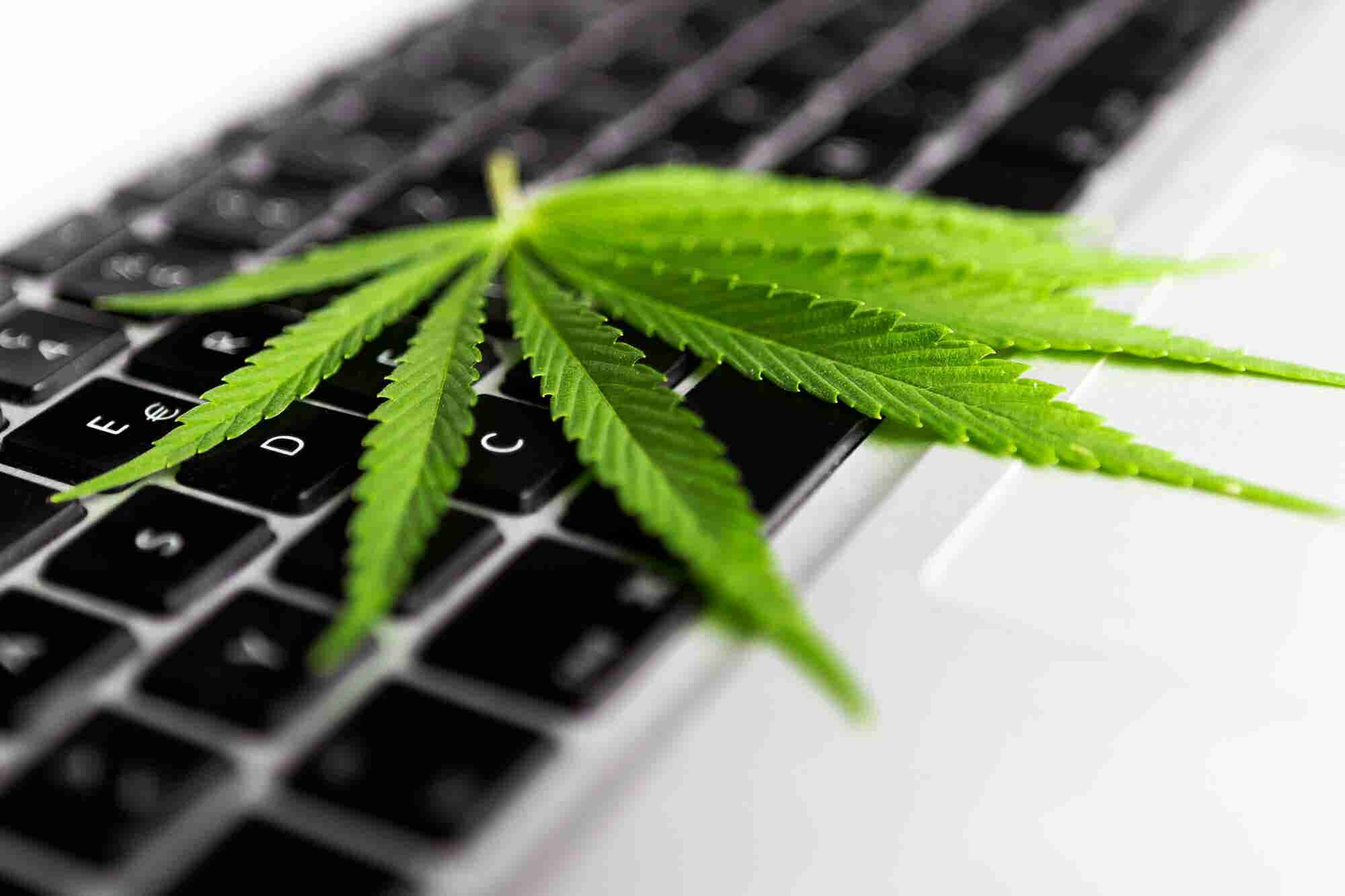 Cannabis Retailers Need Answers to These 6 Questions Before Choosing an Ecommerce Partner