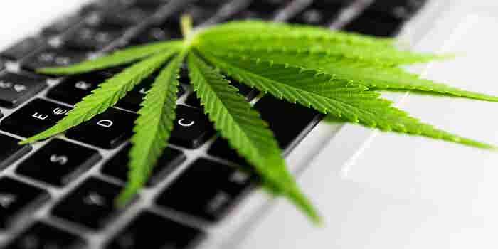 Cannabiswinkels hebben antwoorden op deze zes vragen nodig voordat ze een e-commercepartner kiezen