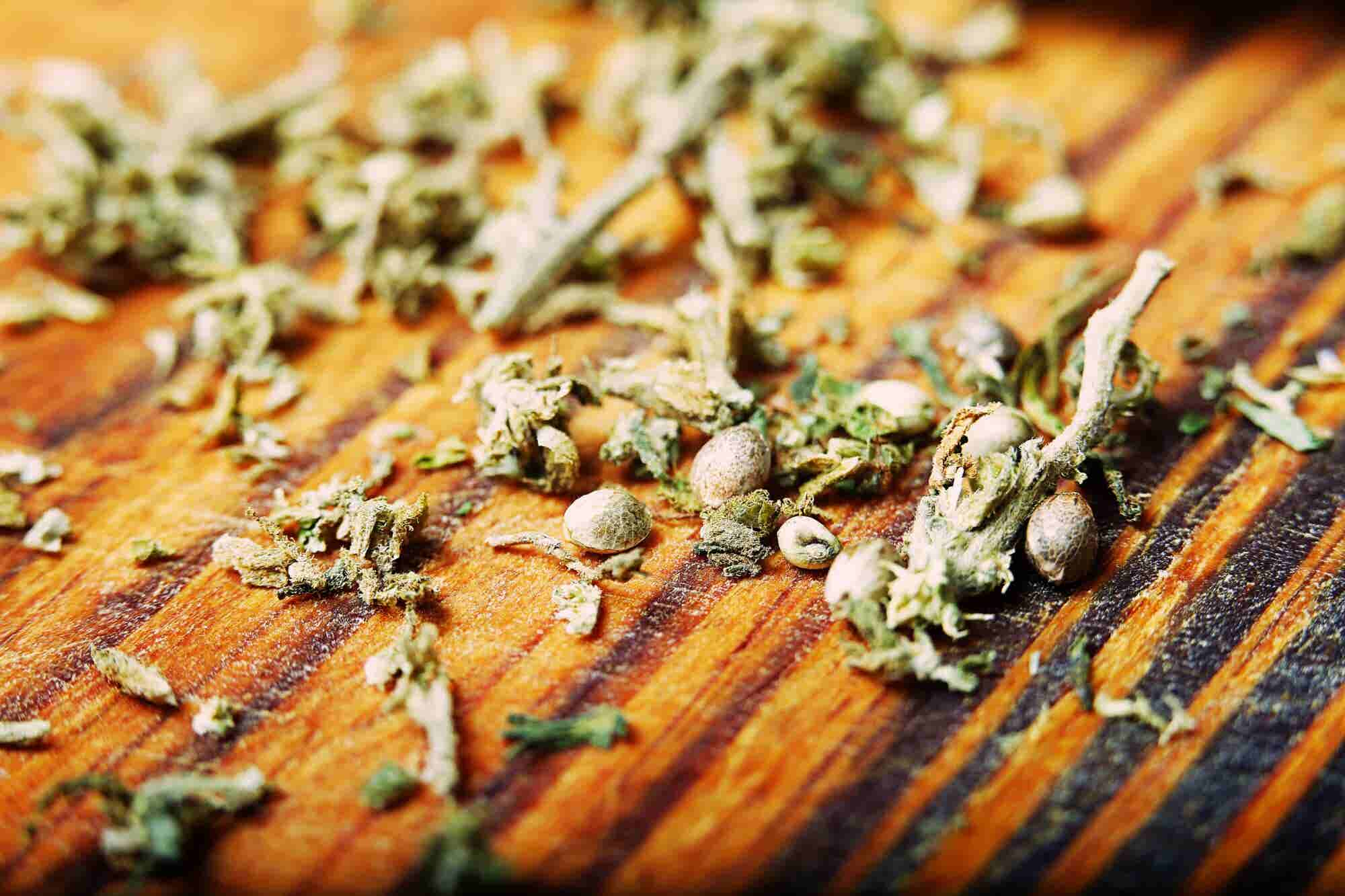 An Introduction to the Big Business of Cannabis Seeds