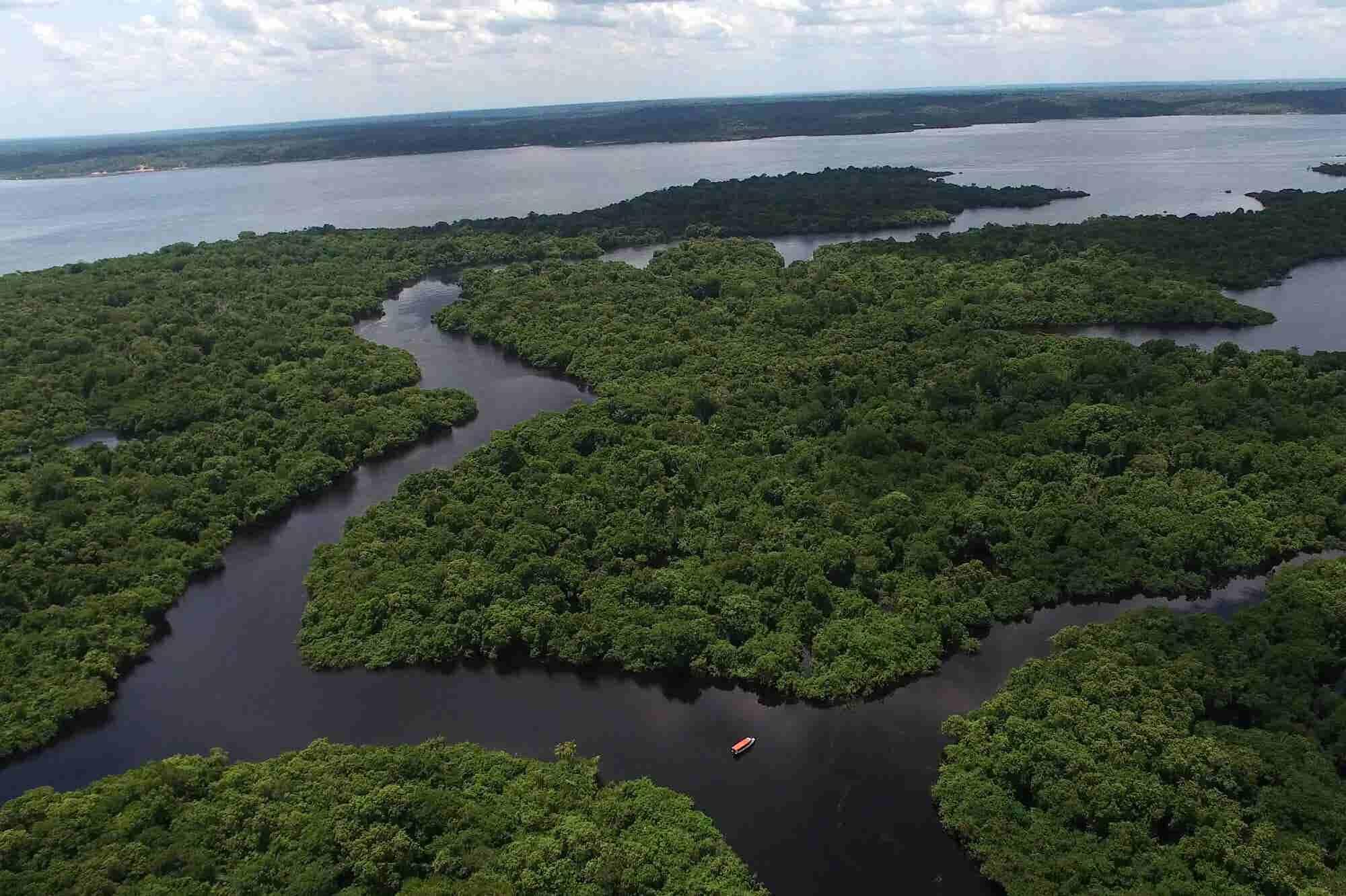 Quién lo diría: la protección estricta del Amazonas fomenta la productividad agrícola en Brasil