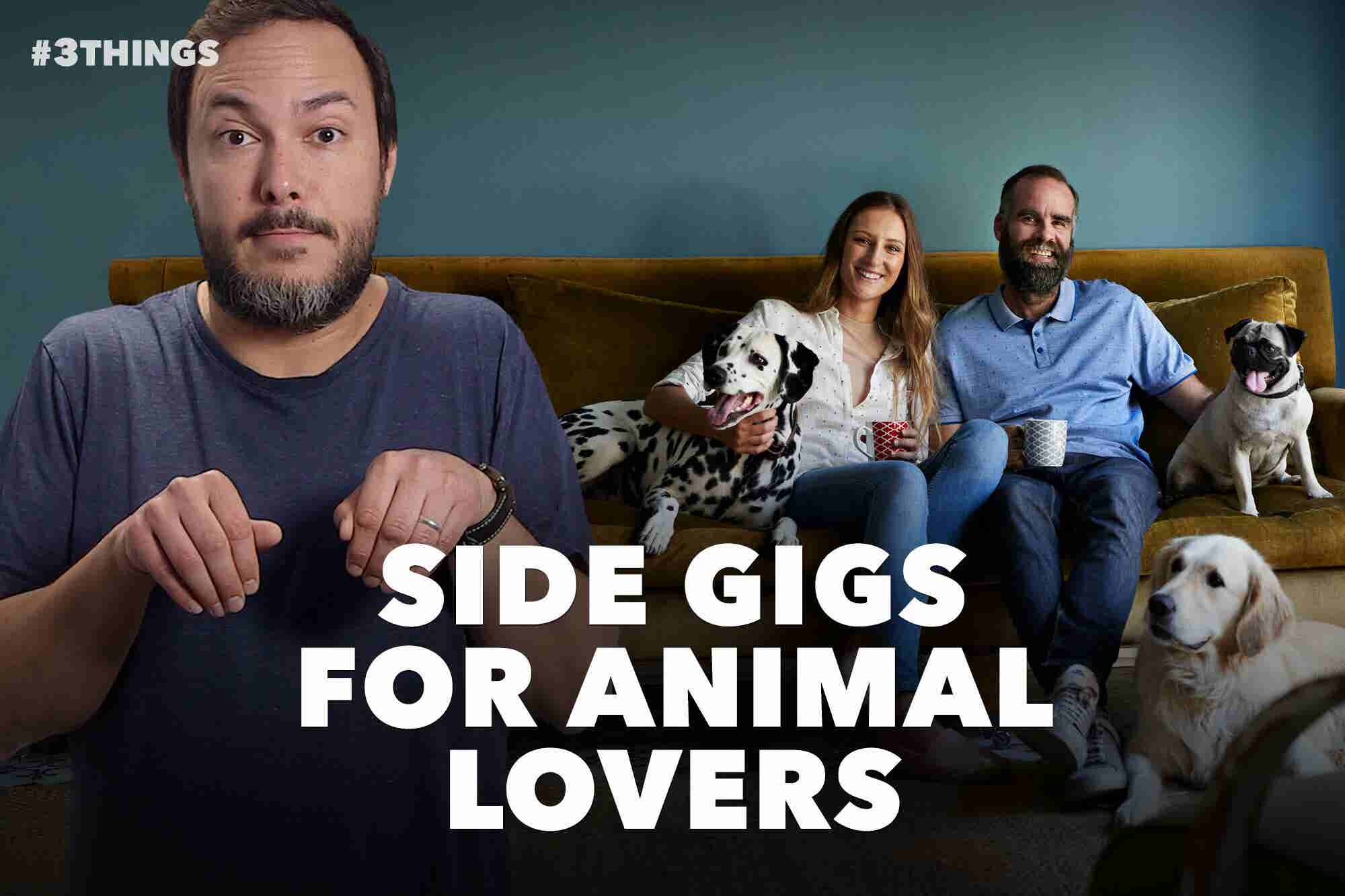 5 Jobs for Animal Lovers Looking to Make Extra Money (60-Second Video)