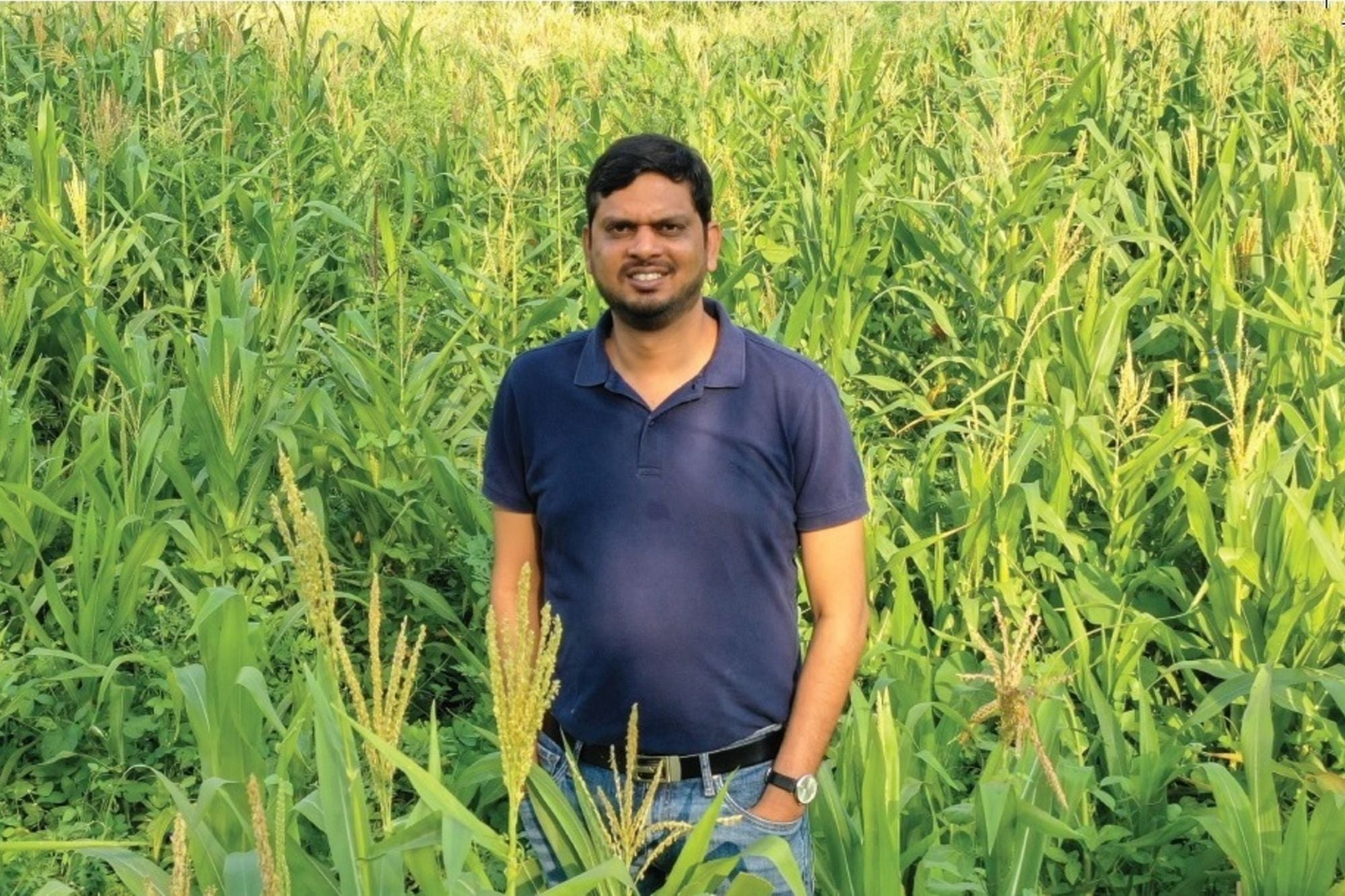 How CropIn is Tranforming the Agrisector