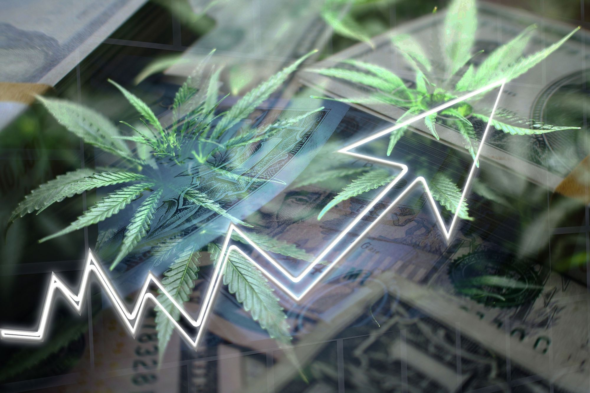 The Budding U.S. Cannabis Industry Needs Normal Access to Business Banking and Insurance