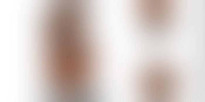 საქართველოში ქვევრის ფორმის 3D-გრილი დაიბეჭდება