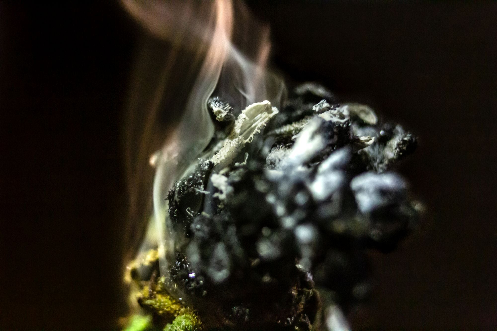 Science: People in China Were Using Cannabis in Rituals 2,500 Years Ago