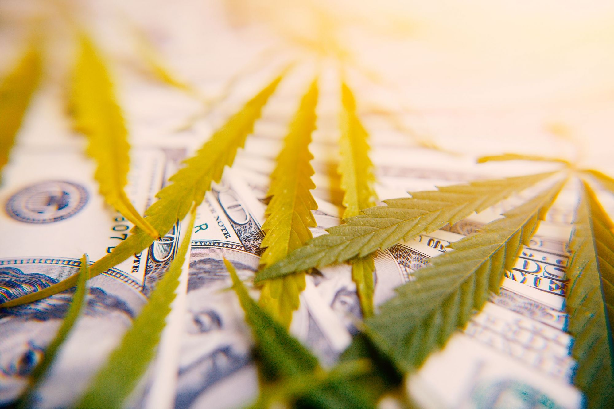 Colorado Has Collected More Than $1 Billion in Marijuana Tax Revenue