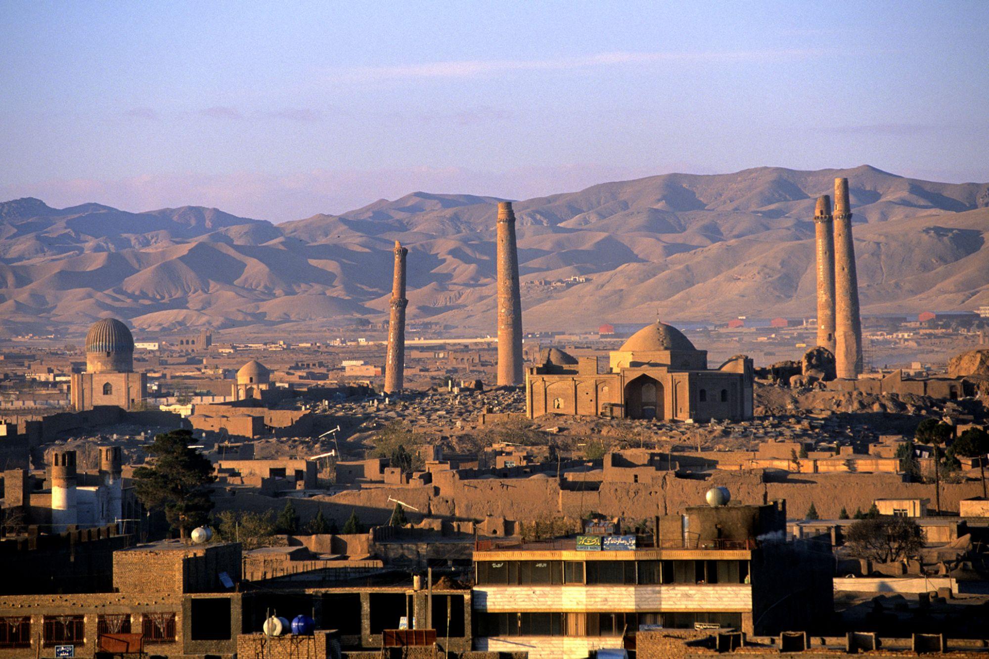 Cannabis: The Afghanistan of Entrepreneurs?