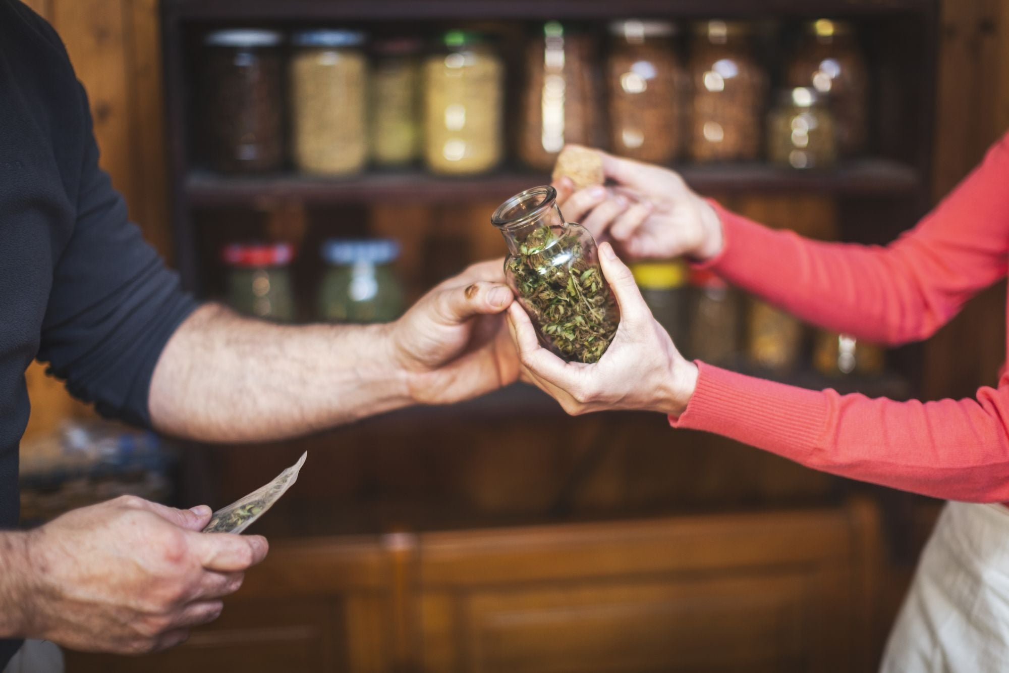, Cannabis Entrepreneurs: Know the Perils of 'Accidental Franchising', Saubio Making Wealth