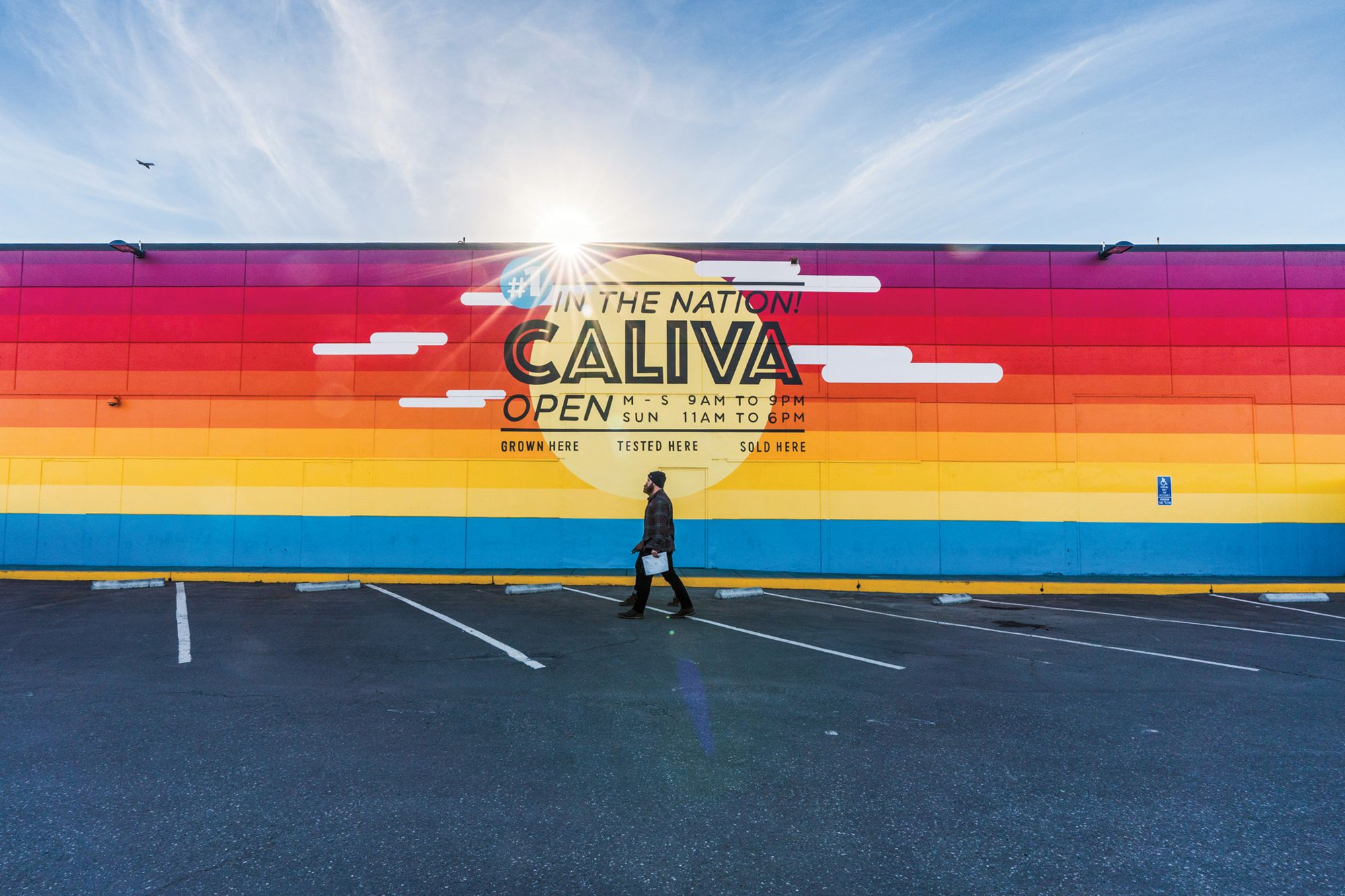 How Cannabis Company Caliva Survived a Business-Ending Regulation