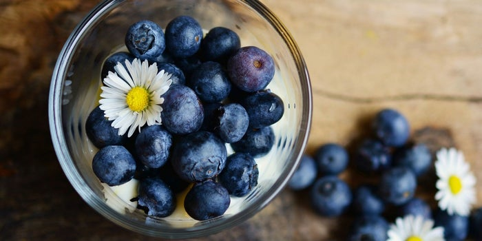 5 Reasons Why We Must Add Blueberries In Our Diet
