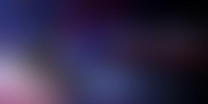 Asus le planta batalla a Apple con un smartphone mejor y más barato que el iPhone 11