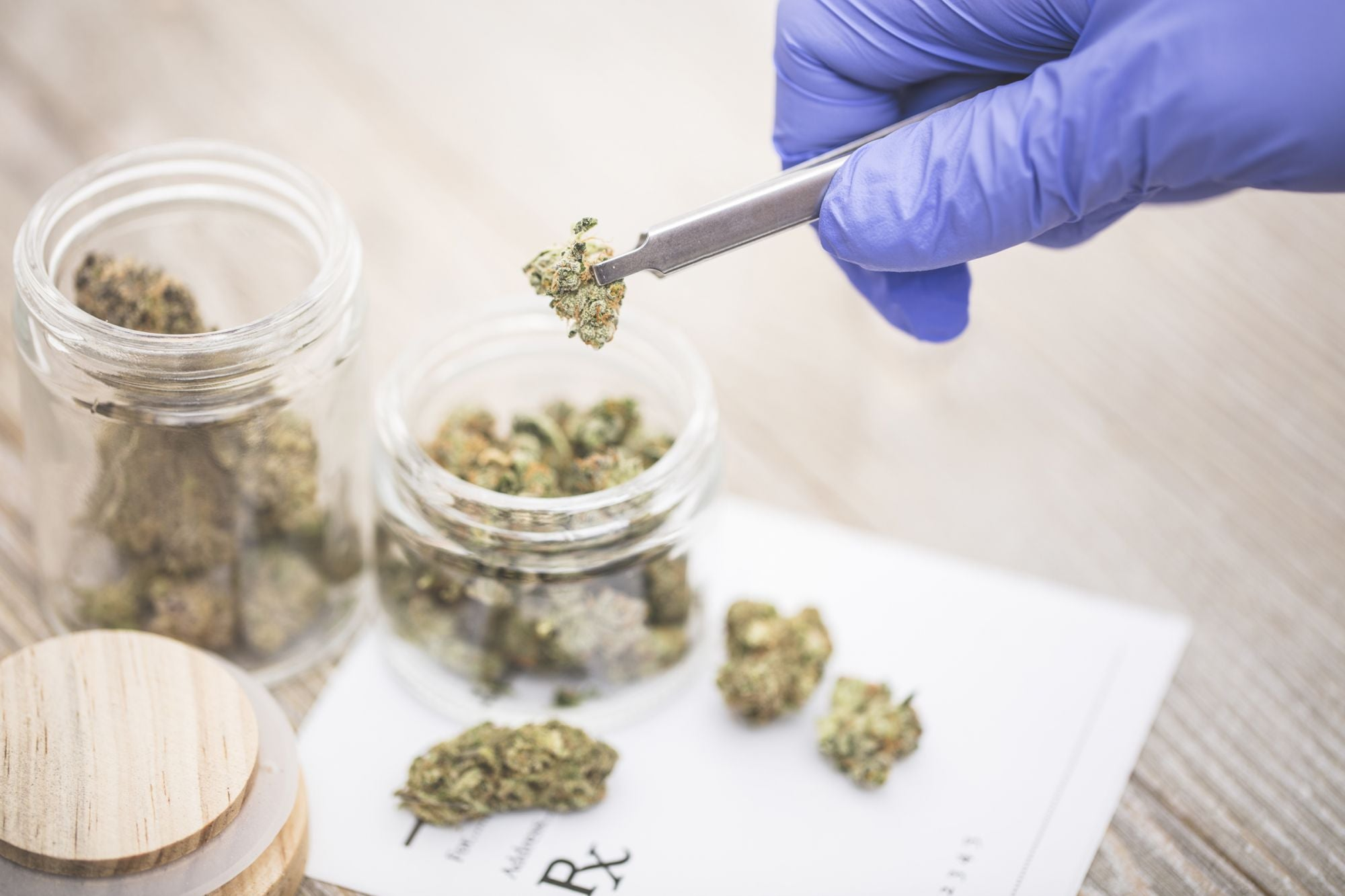More Medical Cannabis Companies Bolster Operations In Lucrative Florida Market Following Smokable Flower Ban Repeal