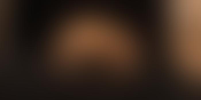 """""""აიგრუპმა"""" ზვიად ციკოლიას მიერ შექმნილი ჯილდო გადასცა მონაკოს პრინცს"""