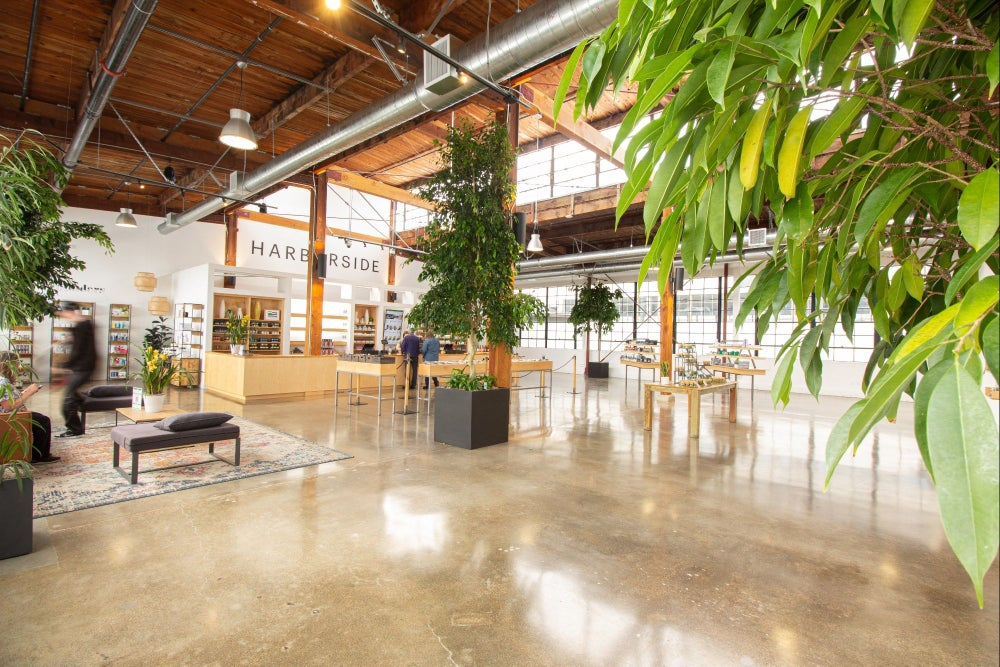 700 Windows Wrap This Dispensary - Store Tour Of Harborside San Leandro