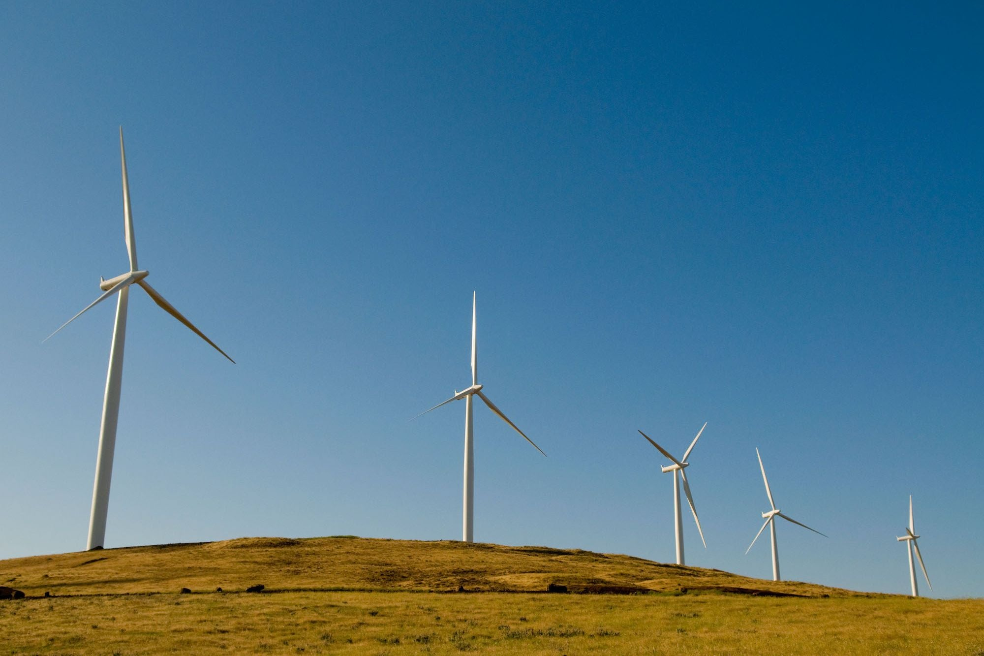 An Easy Way to Cut Your Business' Carbon Footprint