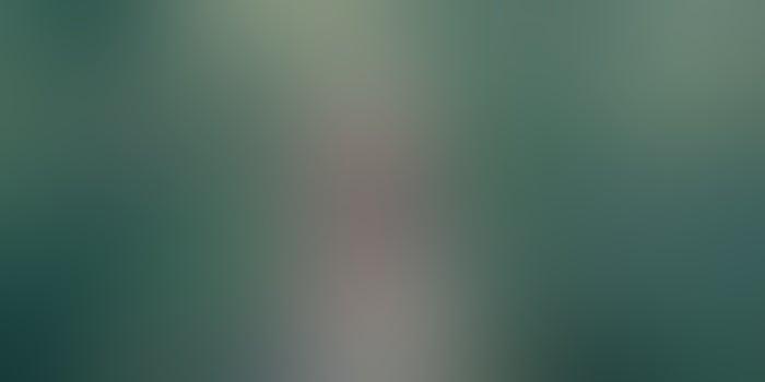 ვანის რაიონის ფერმერმა ქეთი თომეიშვილმა კიტრის სათბური თანამშრომელ ქალებს აჩუქა