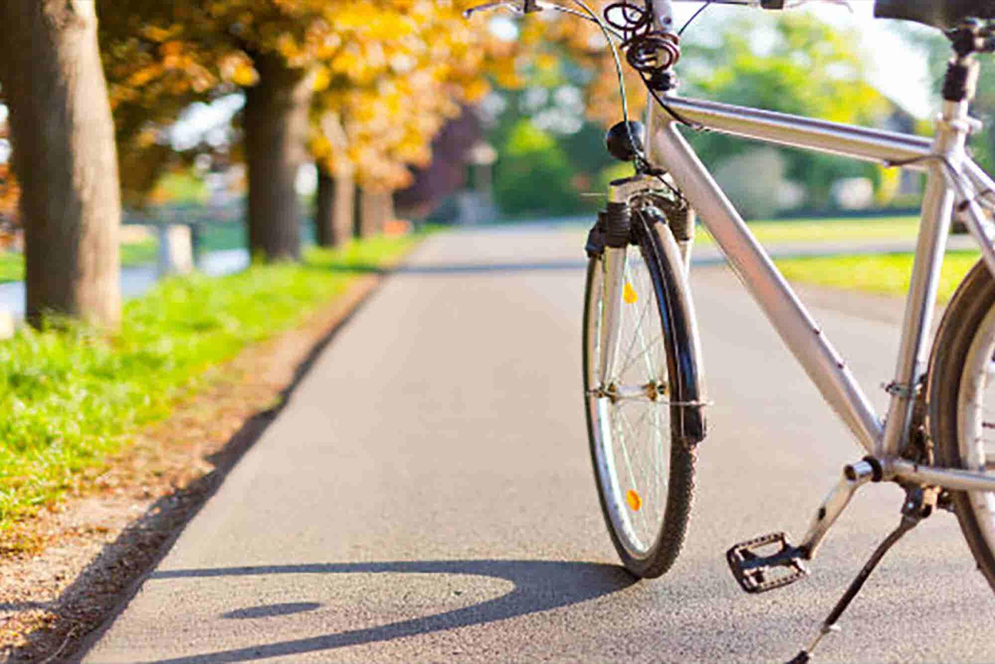Escuela de ciclismo de verano