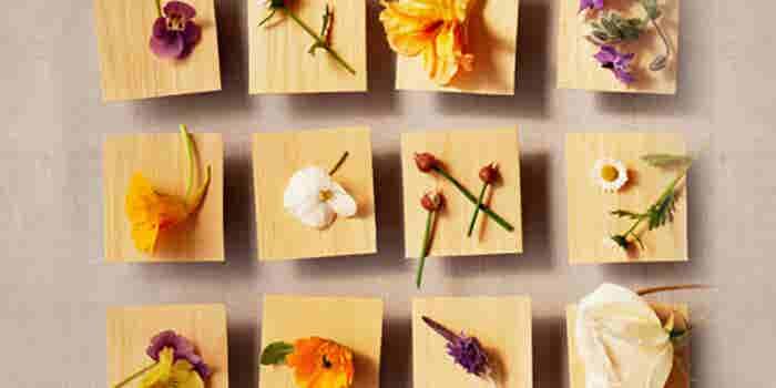 Negocio de flores comestibles