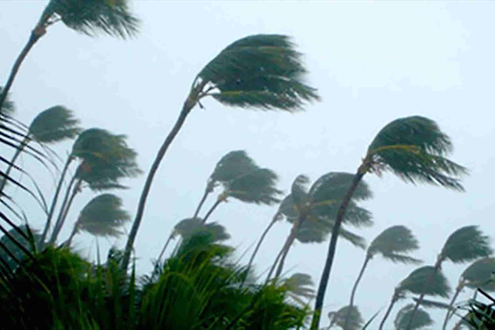 Manage Through the Unthinkable With a Disaster Plan
