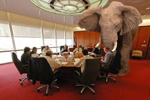 How to Network With the Elephant in the Room