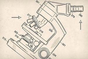 Patent vs. Market Penetration: Where Should Your Focus Be?