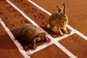 Why Slow and Steady Wins the Race