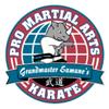 Pro Martial Arts Franchise Corp. Logo